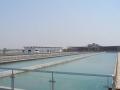 临沂市临港经济开发大山水厂施工组织设计