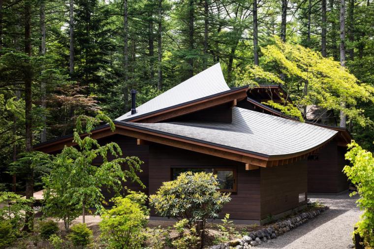 日本密林中的四叶别墅-4