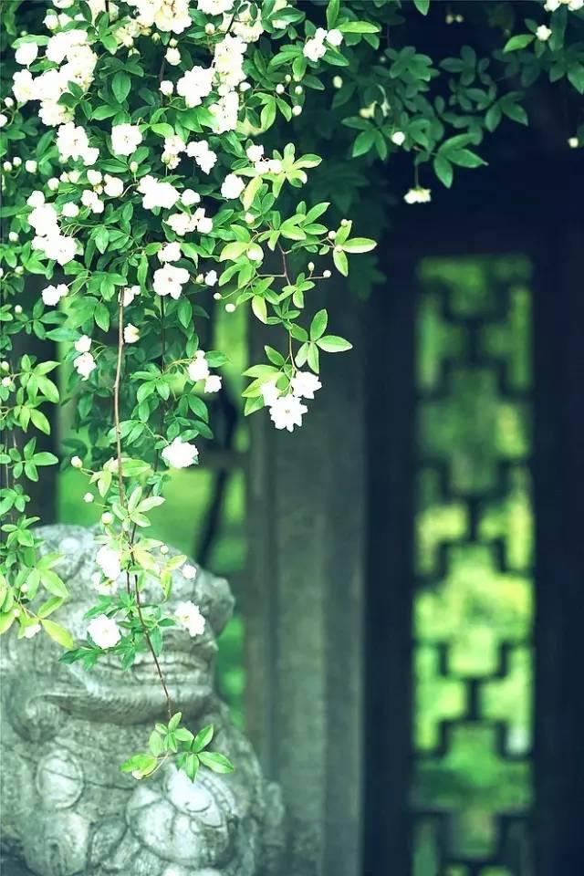 花窗之美,穿越千年而来_13