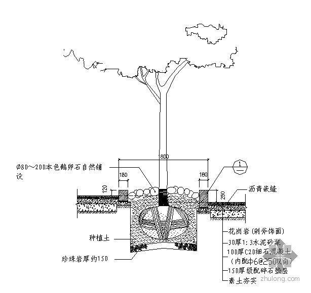 50种树池做法详图