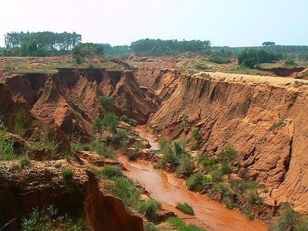 铁路煤运工程水土保持施工方案