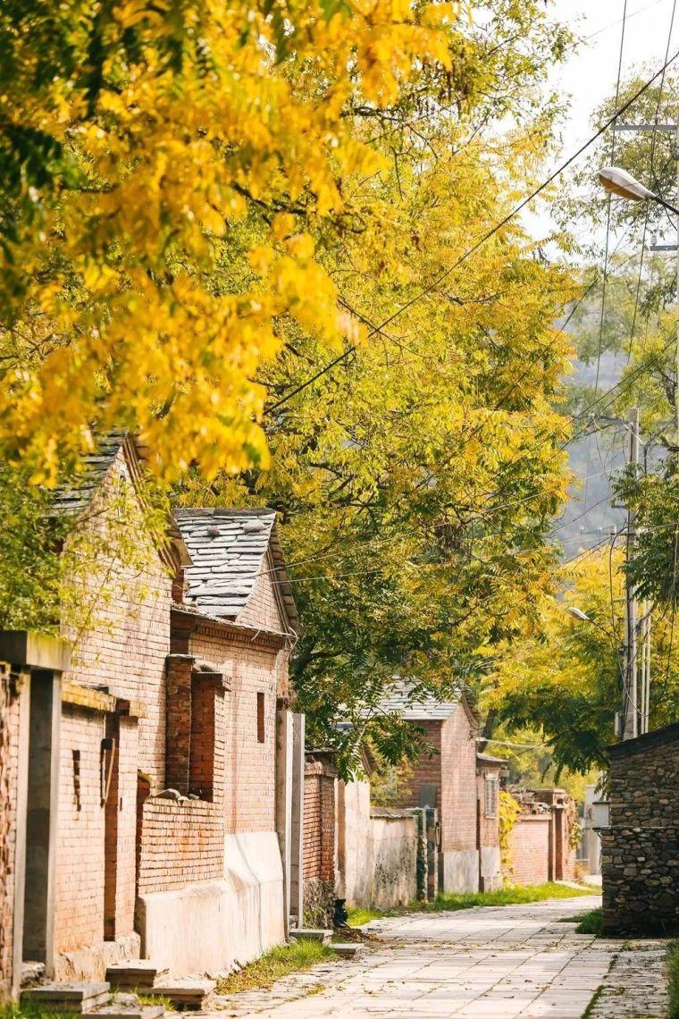 这里的秋天会画画,住进获国际大奖的最美民宿:姥姥家_5