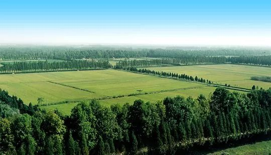 亲子农业丨植物景观设计要点_3