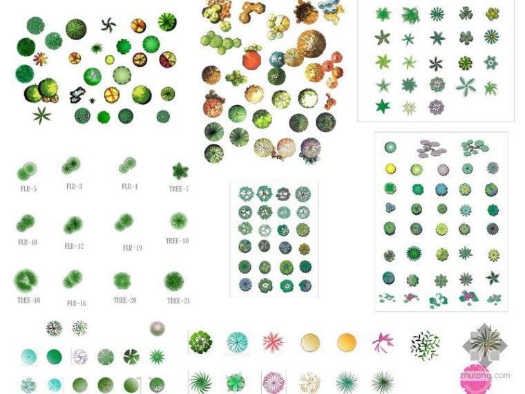 树木和园林植物平面素材