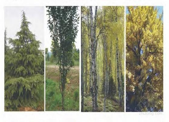 知名地产景观策划方案(pdf 共103页)