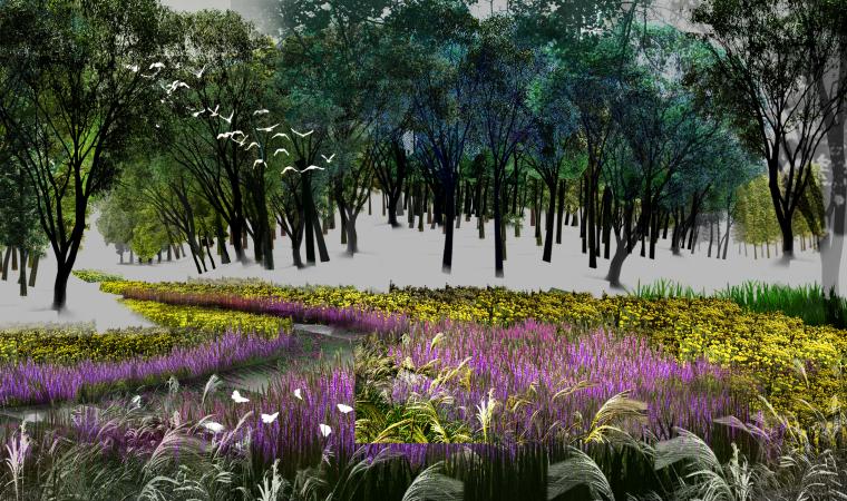 景观植物立面PSD分层素材