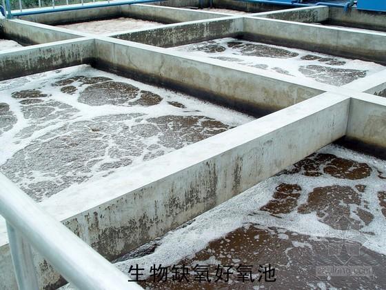 uasb工艺设计计算资料下载-食品工业园污水处理工艺设计