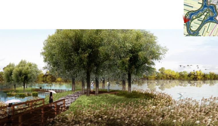 [辽宁]国家试点湿地公园景观规划设计文本-树岛效果图