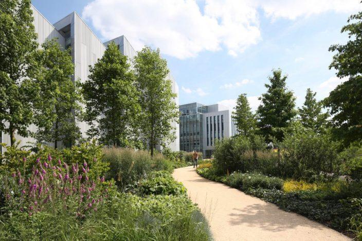 英国天空学校周围景观