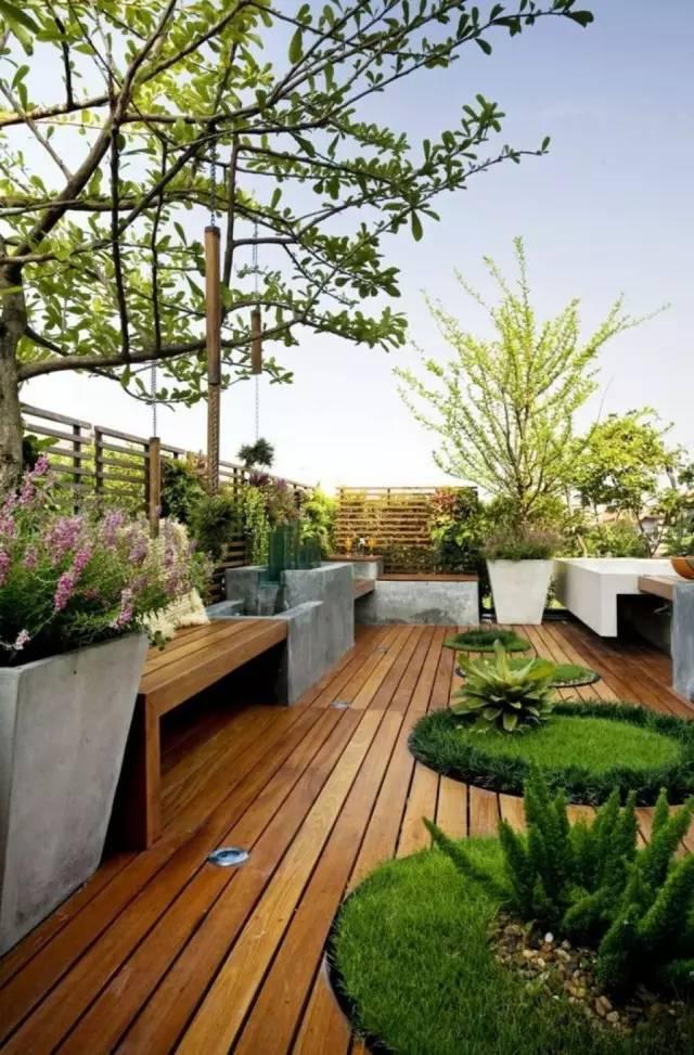 如何用植物装点你的园林景观!_30