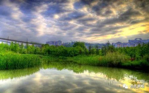 湿地景观设计要点,大量理论大量案例不容错过!