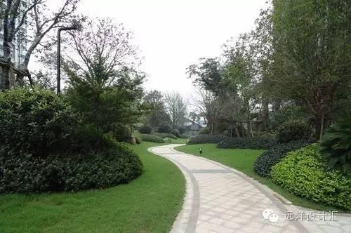 一个会种树的设计师,住宅每平方溢价3000元_30