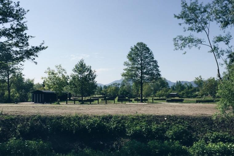 斯洛文尼亚首都的市镇公园-5