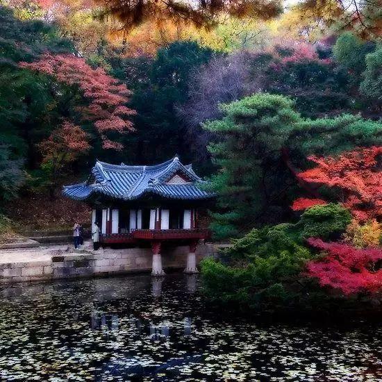 这才是中国人的院子,秋天美到骨子里_6