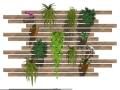 分享个绿植su素材