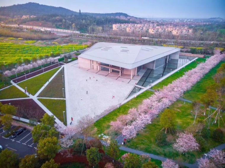 高晓松在杭州开公益图书馆,安藤忠雄亲自操刀设计美炸天!