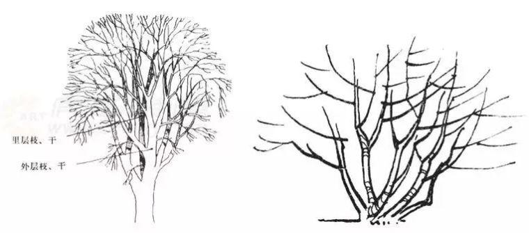 作为景观设计师必须掌握的景观线稿表现_14