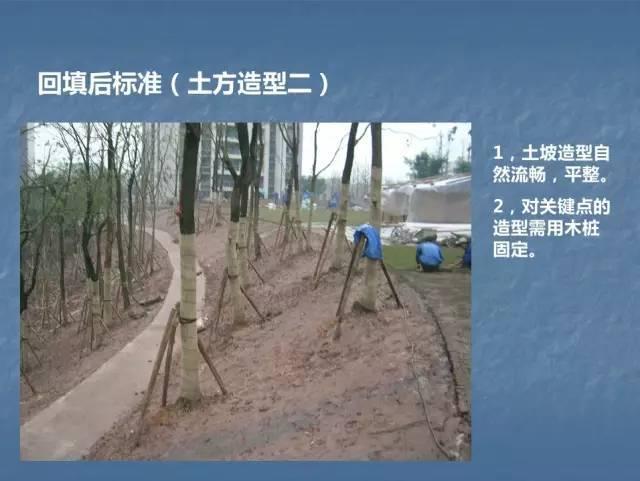 龙湖景观施工工艺标准效果(让你更懂现场)--软景篇_6