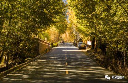 景觀道路|鋪裝材料與排水方式_2