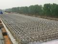 高速铁路工程客运专线站前及相关工程施工组织设计(691页)