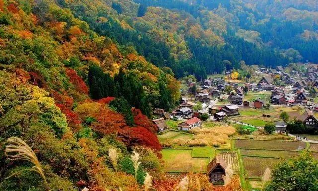10个日本最美小镇_8