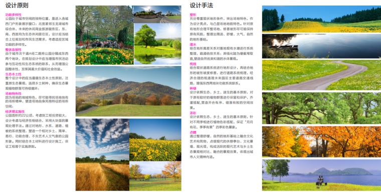 [安徽]含山县山体高差森林公园修建性详细规划设计B-5设计原则