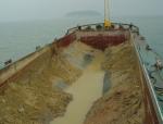 环境岩土工程学之五城市固体废物的传统处置方法(PPT,80页)