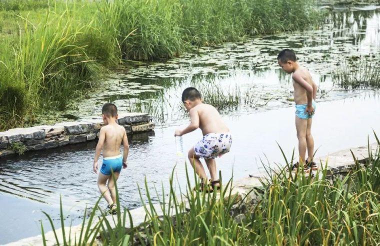 案例 渭柳湿地公园_19
