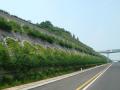 60篇基坑与边坡工程施工资料整理~~