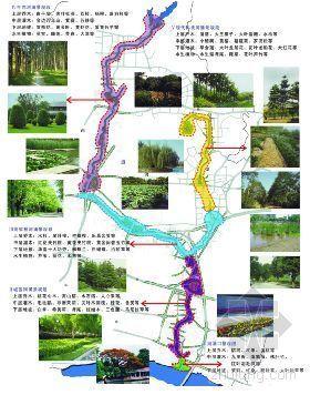 广州区河涌景观规划设计