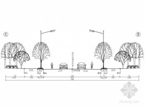 35m宽城市支路绿化工程全套施工图(13张)