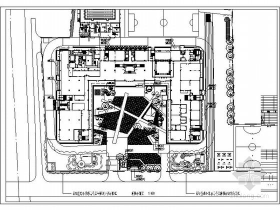 [上海]校园室外绿化景观设计施工图