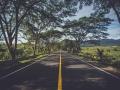 [道路工程]四川石化基地新都段道路工程监理细则(共27页)