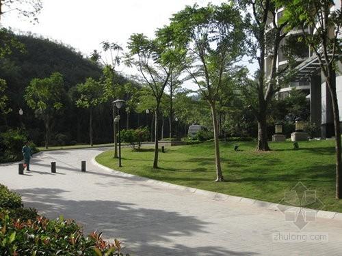 园林绿化及道路铺装监理细则(流程图)