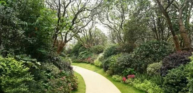 景观中的园路设计_12