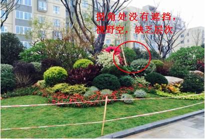 景观植物配置葵花宝典_88