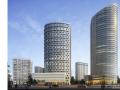 香港新世界项目钢结构工程80t履带吊安拆专项方案