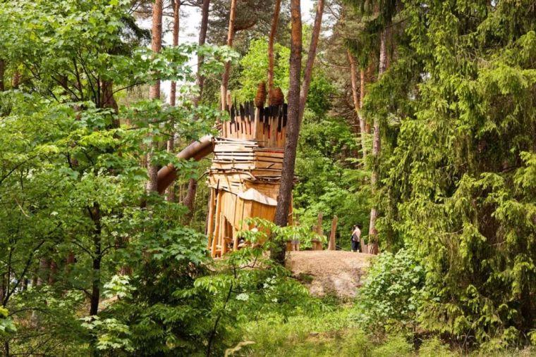 BadLippspringe森林公园_15