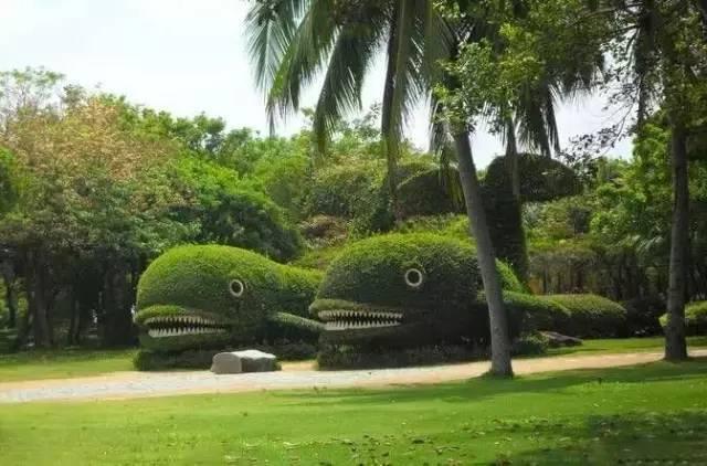 80个极美植物雕塑_36
