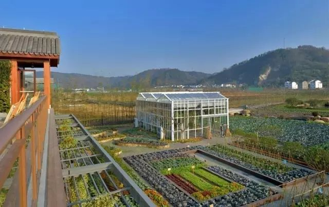 他建起这样一个农庄,将改变两三亿人的生活_4