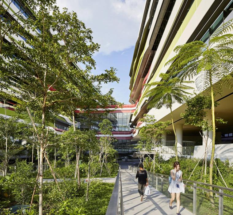 新加坡工程设计大学_3