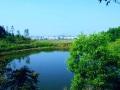 【广东】18年水塘整治工程预算书(施工图纸)