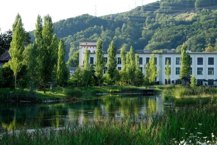 瑞士LowerFactoryPond水系环境修复-8