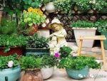 百搭的私家花园设计风格!值得珍藏!