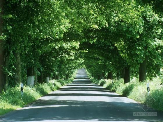 农村公路维修改造工程可行性研究报告(66页)