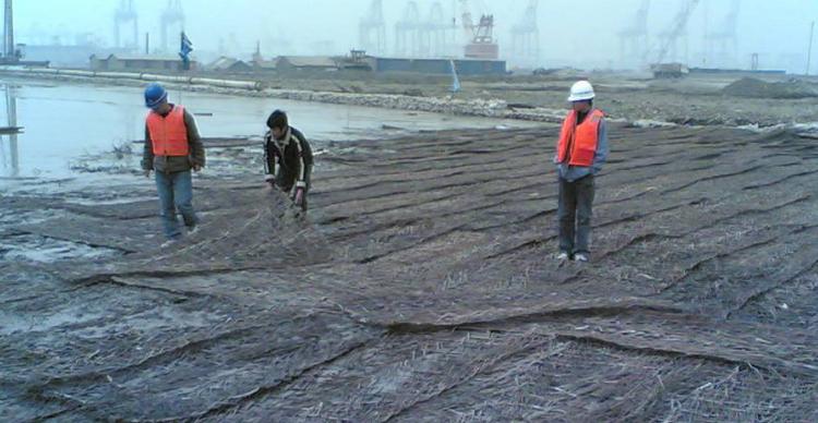 黄骅港散杂货码头工程地基处理施工组织设计_8
