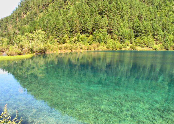 高度解读景观水处理和生态修复技术