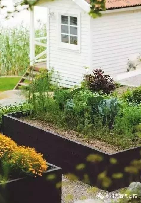 120款庭院菜园告诉你,这样更美!