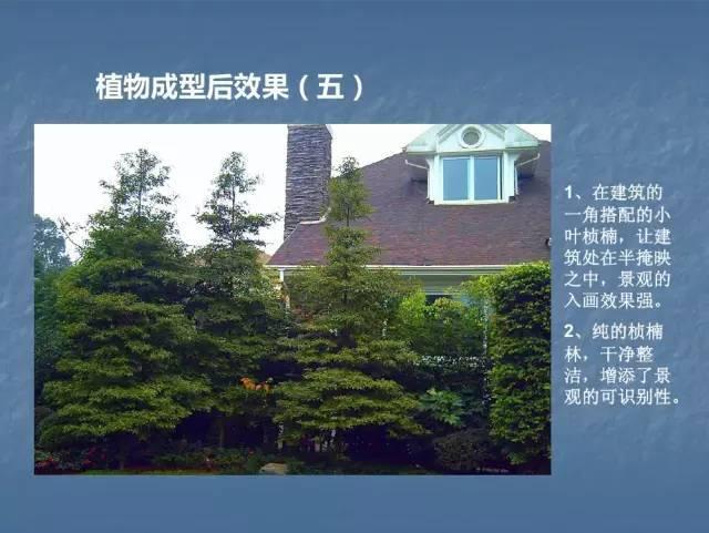 龙湖景观施工工艺标准效果(让你更懂现场)--软景篇_37