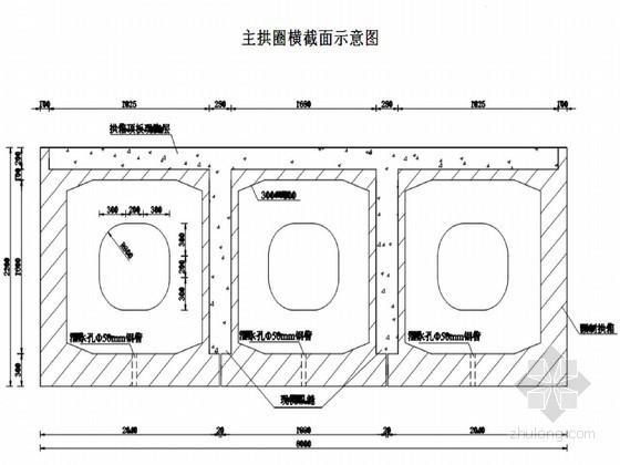 水利枢纽工程渡槽拱圈吊装施工方案(图文并茂)